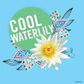 Cool Waterlily