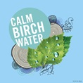 Calm Birch Water