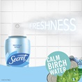 Freshness Calm Birch Water